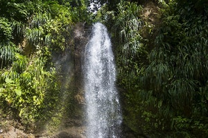 St. Lucia's Waterfalls