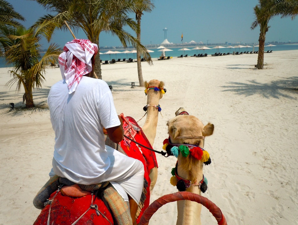 Humps and Bumps of Camel Riding