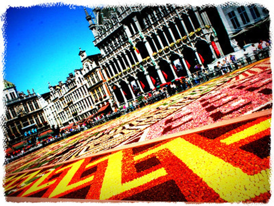 A carpet of flowers Brussels  Belgium