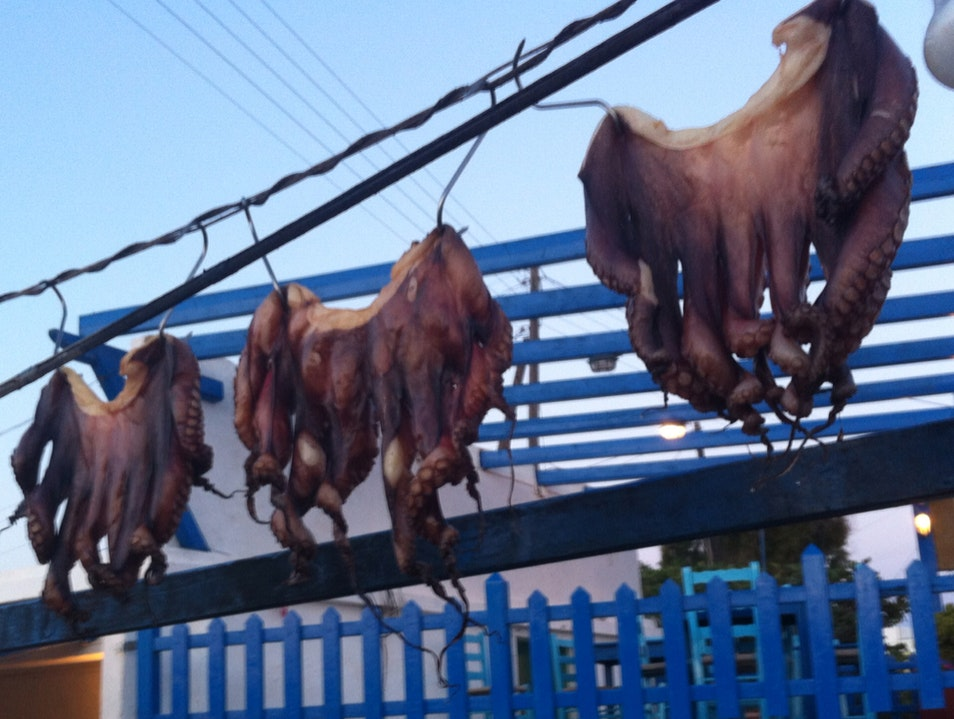 octopi hanging out to dry Ano Meria  Greece