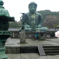 Kōtoku-in - The Great Buddha of Kamakura Kamakura  Japan