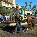 Del Mar Racetrack Del Mar California United States