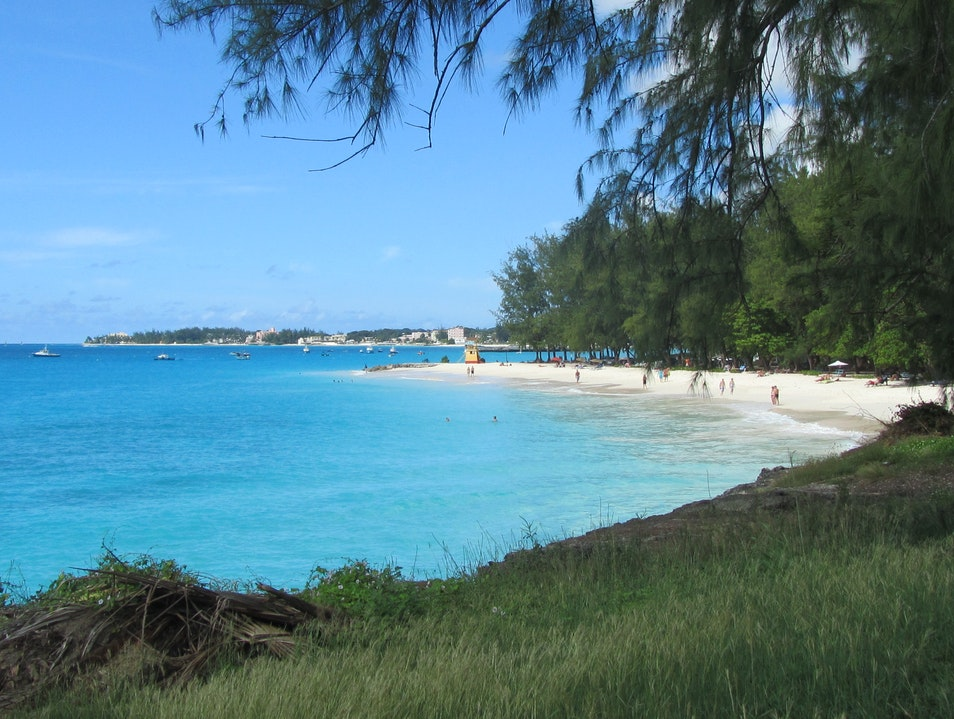 The Beach Rices  Barbados