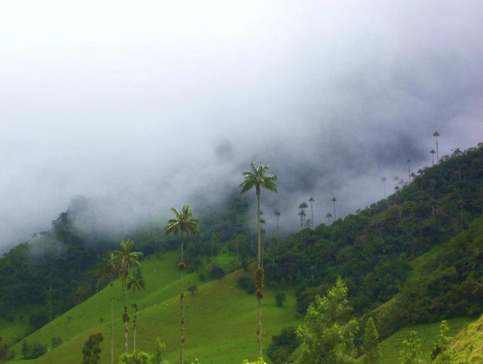 In the clouds Murillo  Colombia