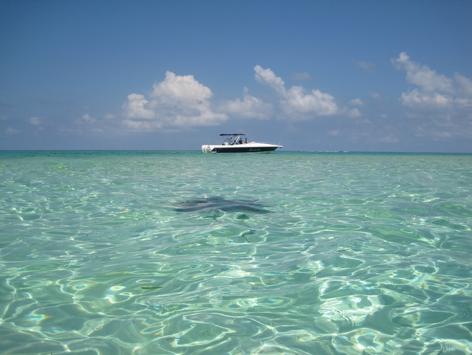Swimming with Stingrays in Grand Cayman Rum Point  Cayman Islands