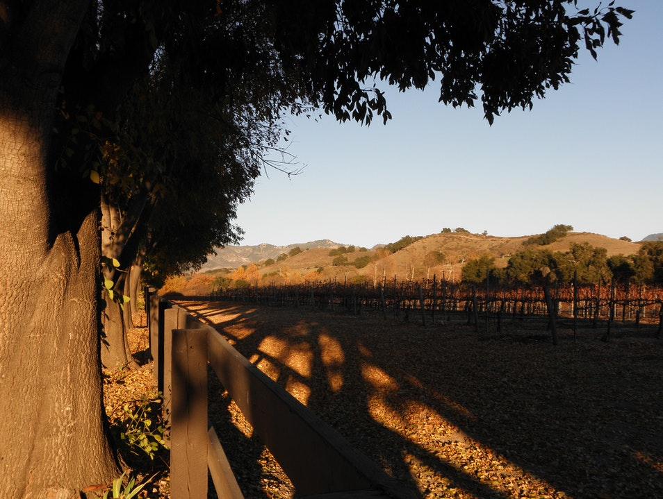 Wine route worth raving about  Santa Maria California United States