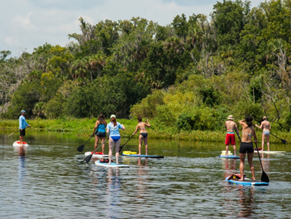 Paddleboarding Down Wekiva River DeBary Florida United States