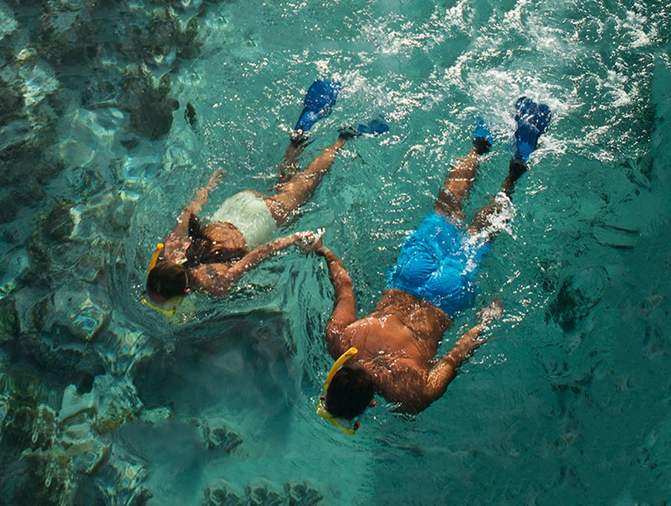 Dive and Snorkel Papeete Papeete  French Polynesia