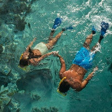 Dive and Snorkel Papeete