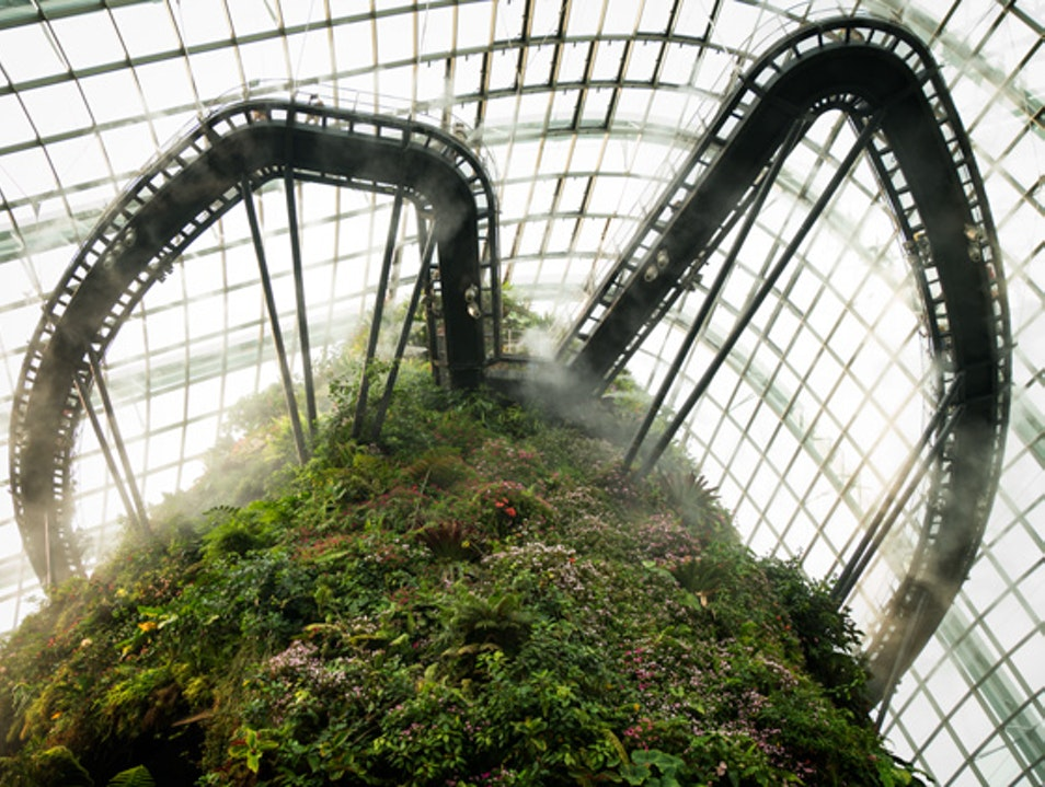 Gardens by the Bay: Where Wonder Blooms