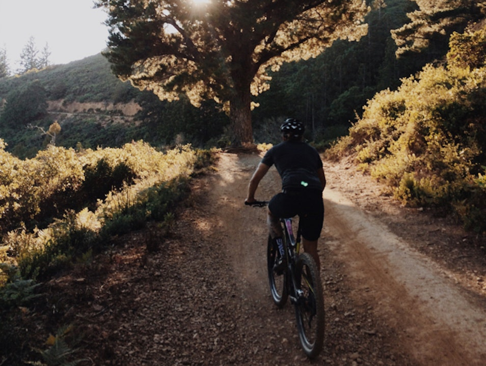 Mountain Biking Railroad Grade Mill Valley California United States