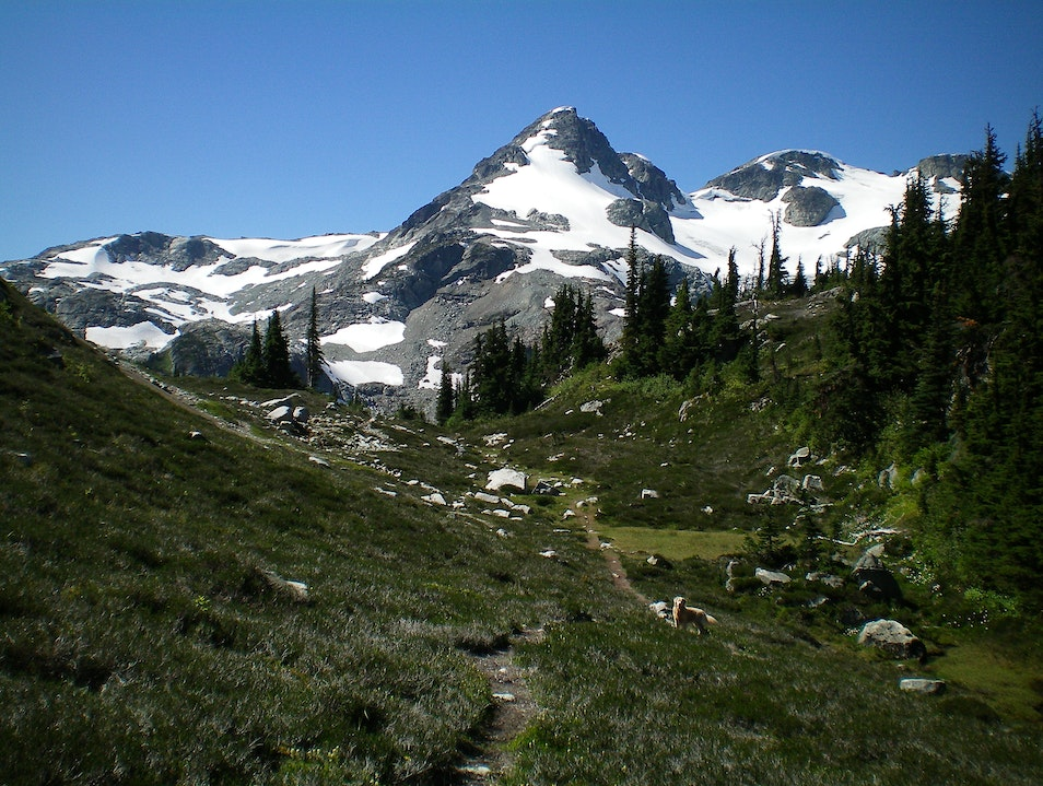 Spectacular Day Hiking North of Whistler