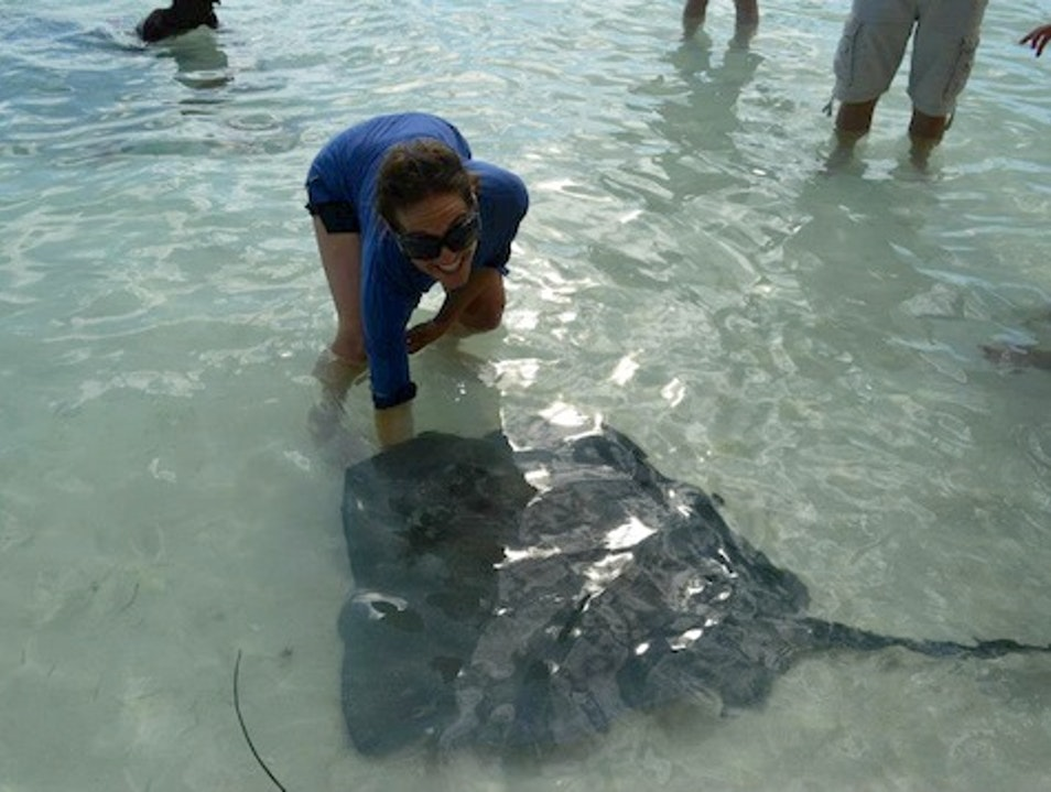 Feeding Stingrays at Chat 'N' Chill on Stocking Island, Exumas, Bahamas George Town  The Bahamas