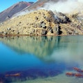 Discovery Lodge Tongariro Forest Park  New Zealand
