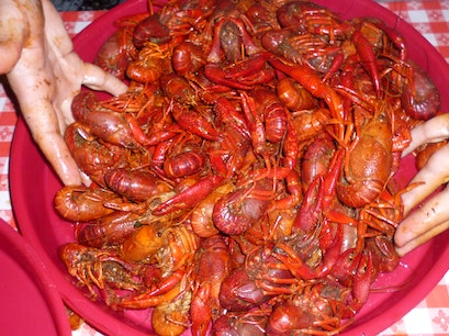 Breaux Bridge Crawfish Festival Breaux Bridge Louisiana United States