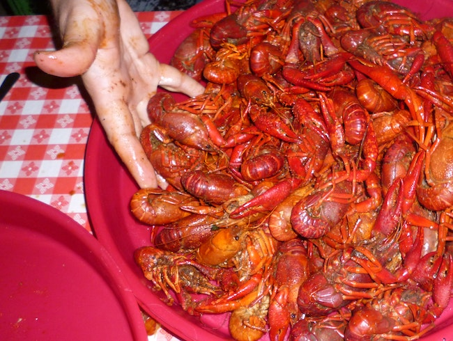 Party Hardy: Breaux Bridge Crawfish Festival Rocks