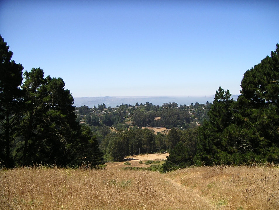 Take a Hike in Berkeley's Tilden Regional Park Orinda California United States