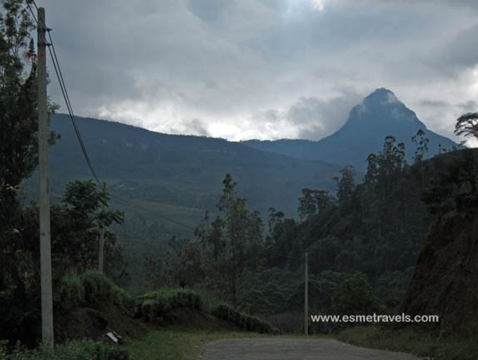 Climbing Adam's Peak Peak Wilderness Sanctuary  Sri Lanka