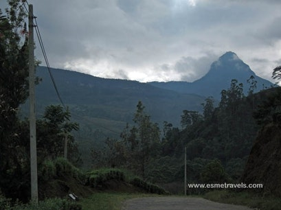 Adam's Peak Peak Wilderness Sanctuary  Sri Lanka