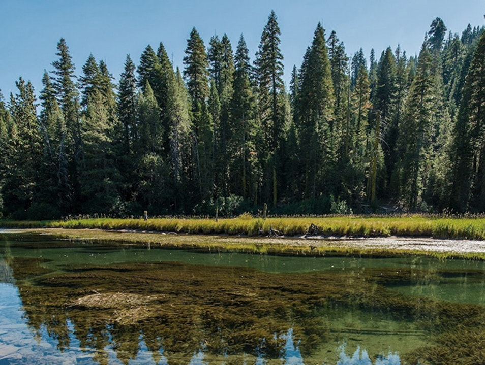 Truckee River Sparks Nevada United States