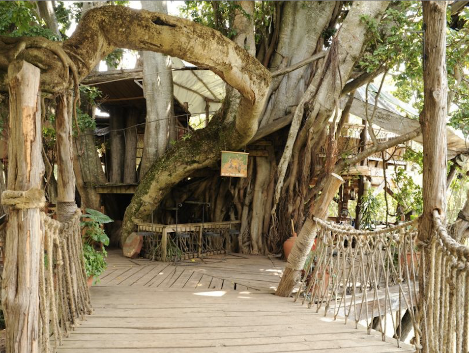 Lunch in a treehouse at the Trout Tree near Nanuki
