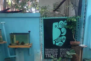 Vieques Conservation & Historical Trust