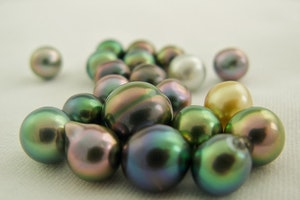 Shop for Tahitian Pearls