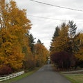 Enumclaw Enumclaw Washington United States