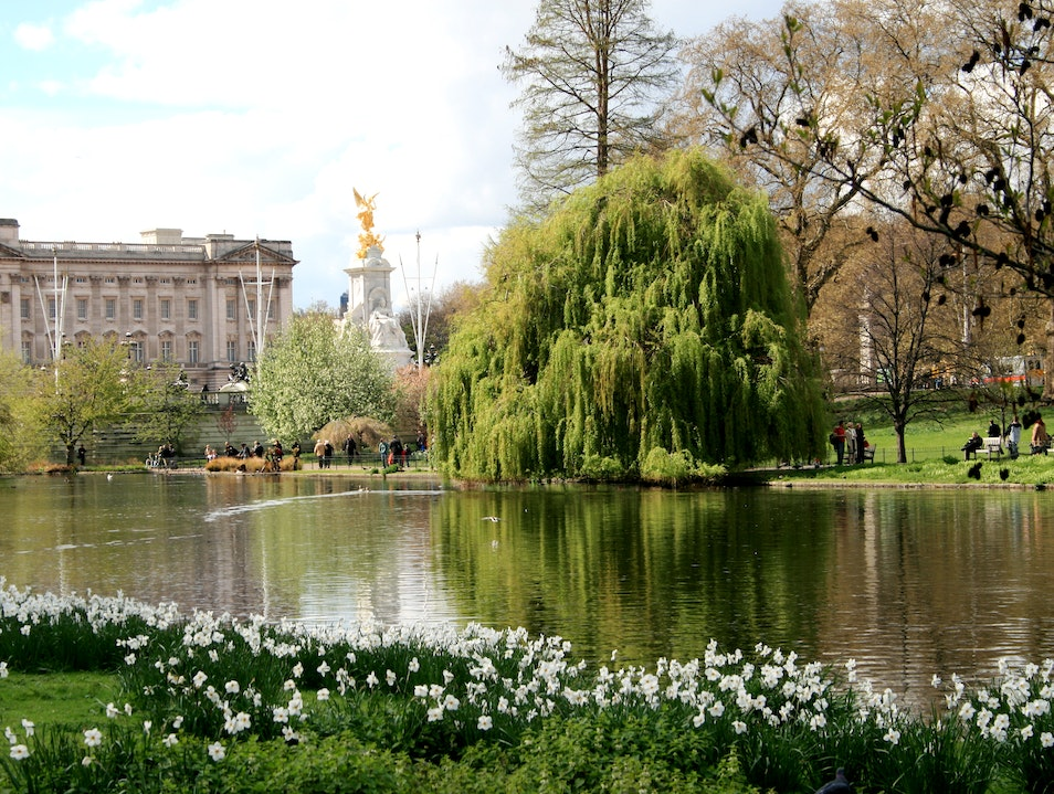 View of Buckingham Palace from Saint James Park London  United Kingdom