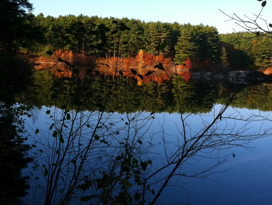 A Pond of Inspiration Concord Massachusetts United States