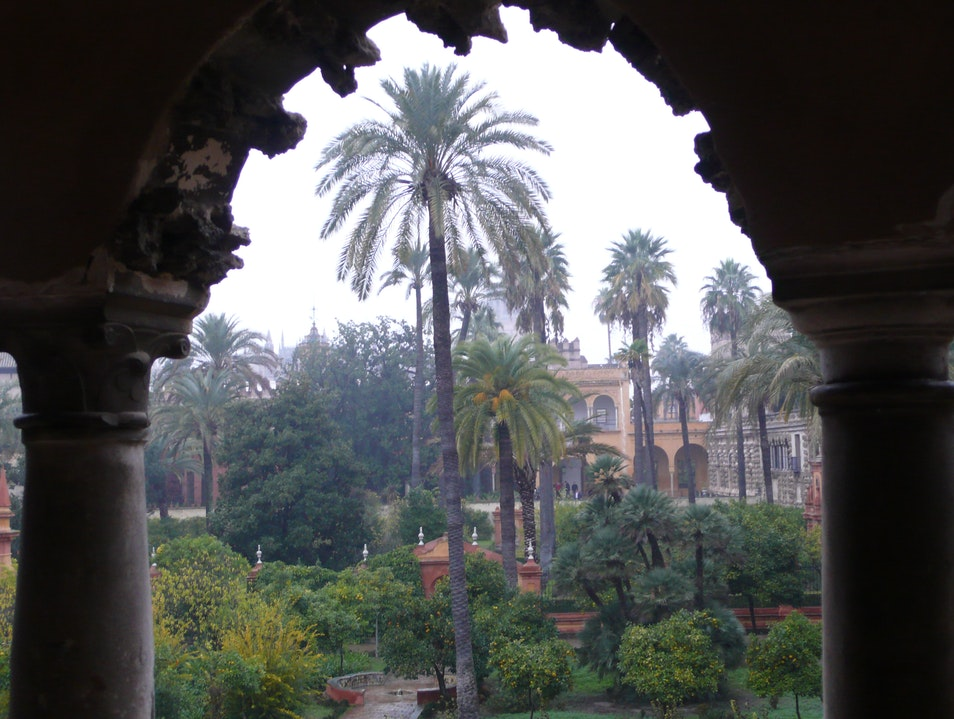 The Gardens of the Alcazar, Sevilla, Spain Seville  Spain