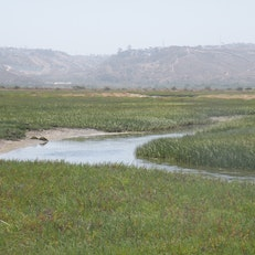 Tijuana Slough National Wildlife Refuge