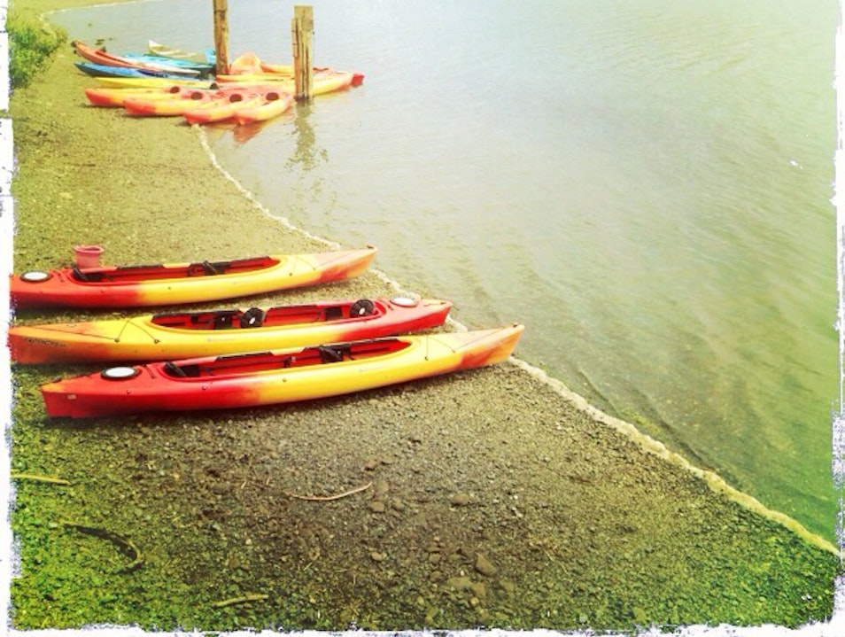 My Favorite Kayaking Place Jenner California United States