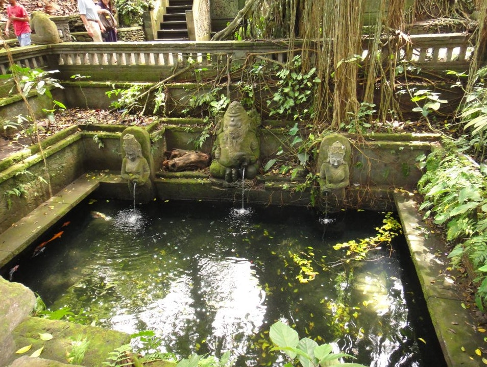 spring water pool Ubud  Indonesia