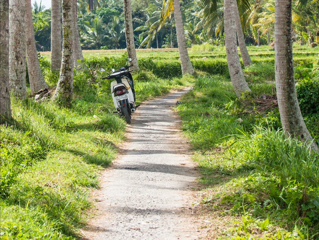 Walking the rice patty trail outside of Ubud, Bali in Indonesia