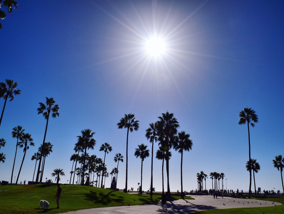 Vibrant Venice Beach & Boardwalk
