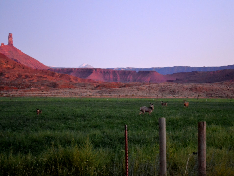 Dusk at Sorrel River Ranch along the Colorado River Moab Utah United States
