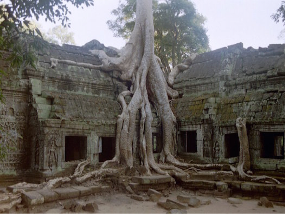 Angkor's Most Atmospheric Temple