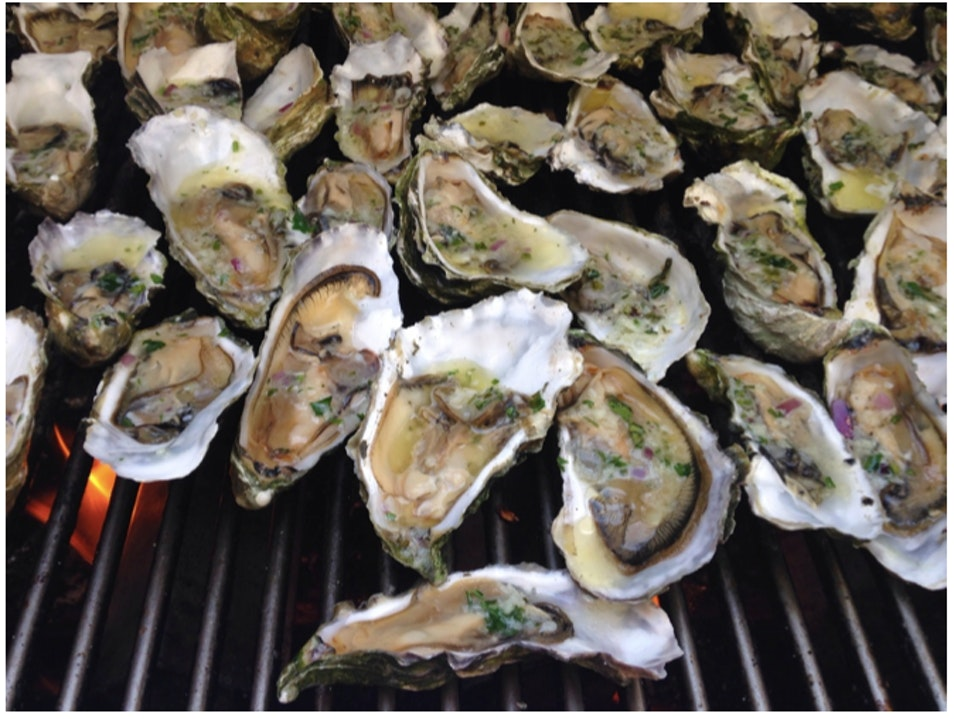 fresh oysters by the water Marshall California United States