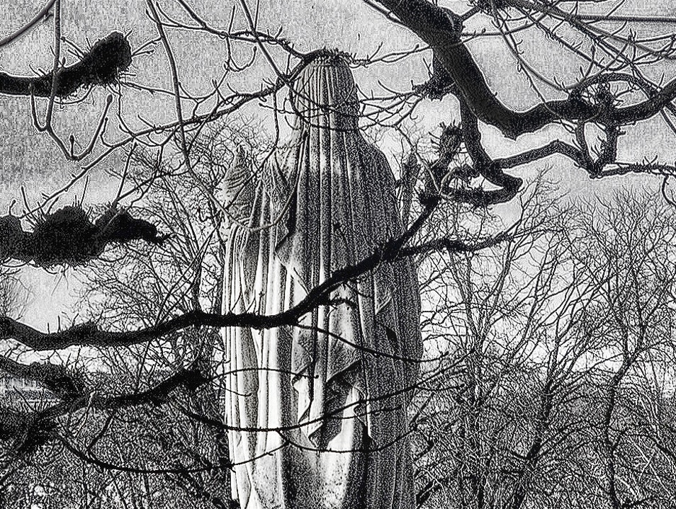 Winter Trees & Statues in the Luxembourg Gardens