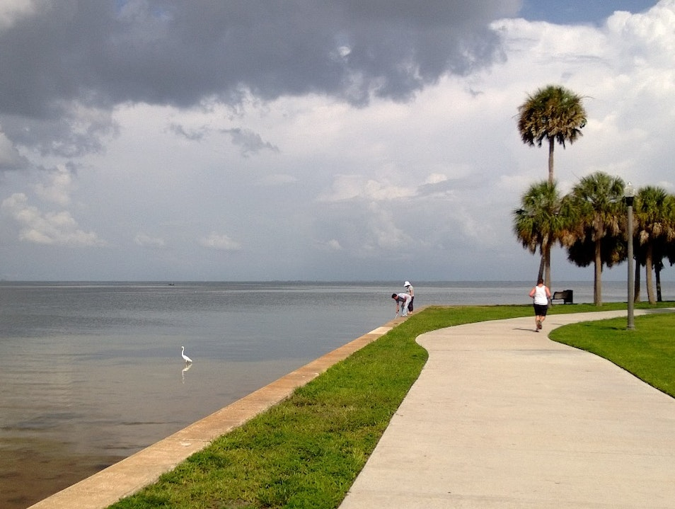 The North Bay Trail Has It All St. Petersburg Florida United States