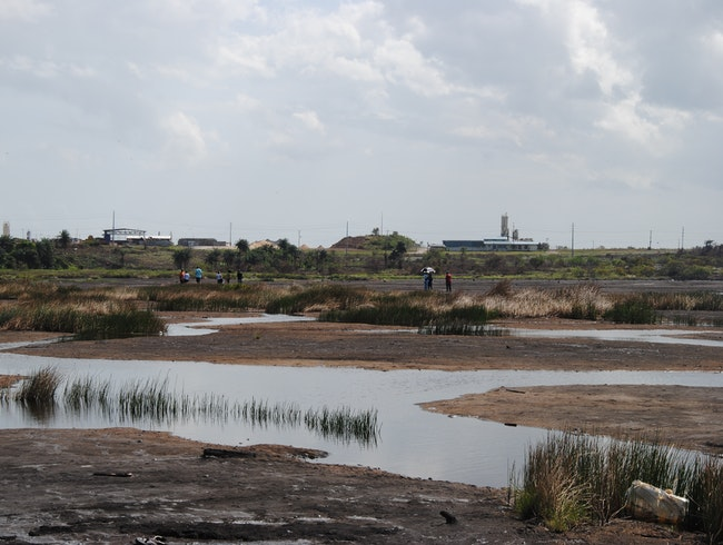 Tar Baby: Why All Roads Come From La Brea Pitch Lake in Trinidad