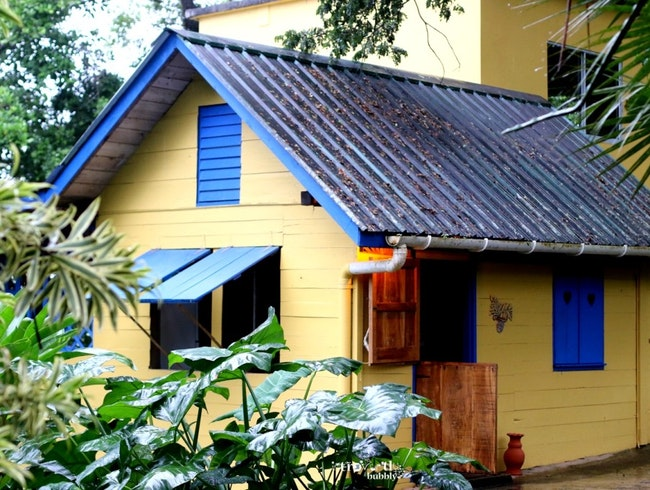 WEATHER FOR LEATHER IN A 100 YEAR OLD WOODEN PLANTATION HOUSE | TRINIDAD, TRINIDAD AND TOBAGO