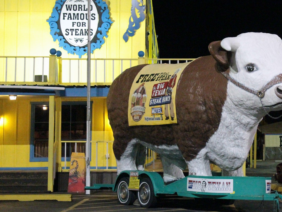 A Challenge to Carnivores Amarillo Texas United States