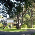 Miller Tree Inn Bed and Breakfast Forks Washington United States