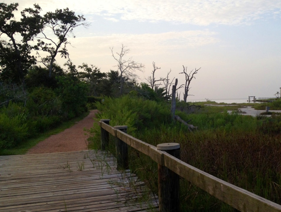 Seabrook trails at sunrise  Seabrook Texas United States