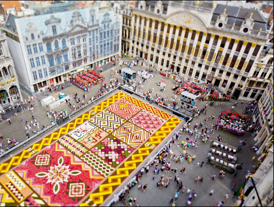 In Brussels, a Brilliant Flower Carpet