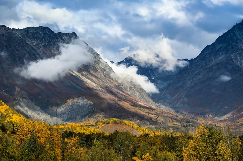 During fall in Alaska's Talkeetna Mountains, the changing leaves near Hatcher Pass offer great photo opportunities for visitors.