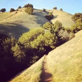 Matt Davis Hiking Trail Stinson Beach California United States