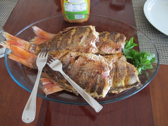Red Snapper for lunch at Rancho Santana, Nicaragua